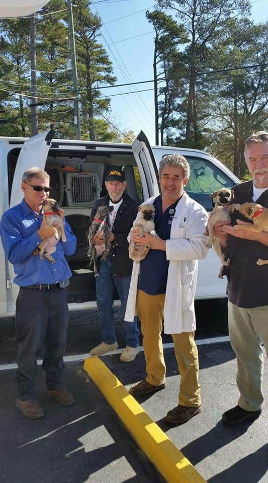 Underhound Railroad Sends 28 Dogs To New York